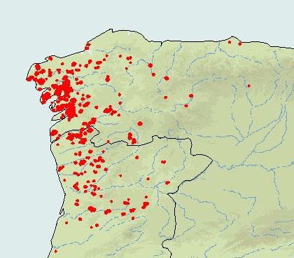 Arde Galicia La Celula Mecanica